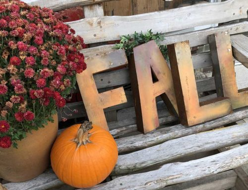 Wednesday Wanderings in an Arkansas Autumn